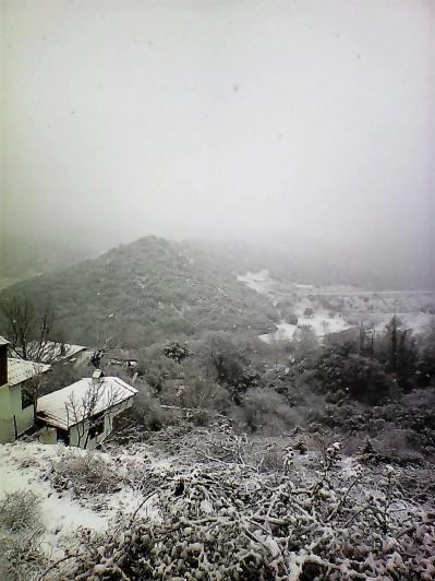 Photo0511