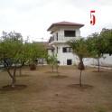 DSC09722